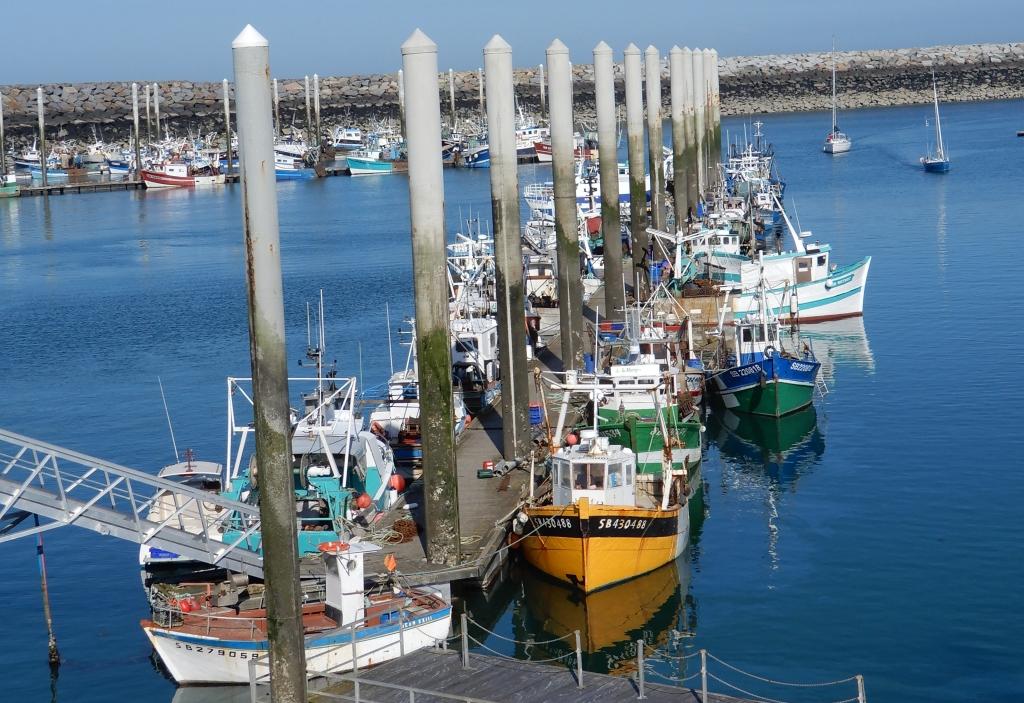 Port de pêche Saint Quay Portrieux